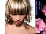£10 For A Wash, Cut, Blow Dry & Fudge Conditioning Treatment, Worth £28.50 At Beyond The Fringe!