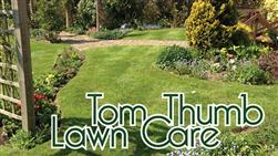 £16 For Your First 2 Lawn Care Treatments (Spring & Summer) Plus Moss Control Treatment & Full Lawn Condition Analysis, Worth £54 From Tom Thumb Lawn Care!